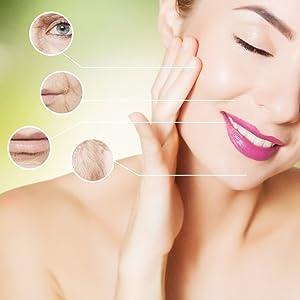 Shvalik Goji cream, anti ageing cream, skin cream, face cream, herbal cream, goji cream, for wrinkle