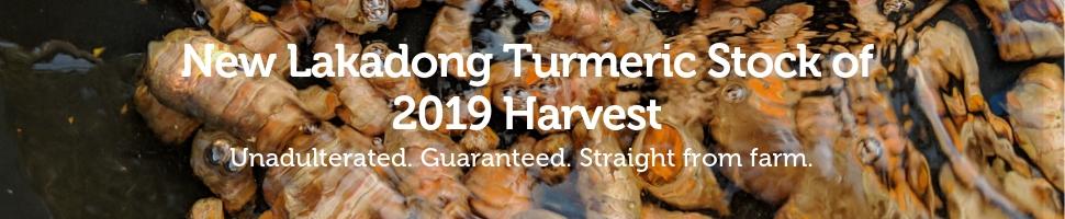 Zizira New Lakadong Turmeric Stock of 2019 Harvest