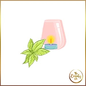 The Beauty Co Tea Tree Oil