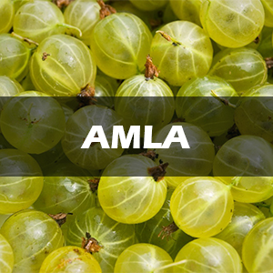 amla hair oil, amla powder for hair growth, amla oil for hair growth, hair growth oil, hair oil, oil