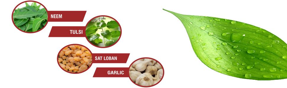 natural ingredients cream,neem itching cream,Manjistha cream,herbal itching cream,tulsi ,