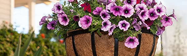 coir hanging baskets, coir plant containers, coir planters, coir pots, coco baskets