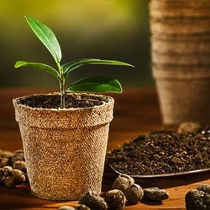 coco pot, coir pot, coir seedling pot, fiber pot, seedling tray cups, coir cups, seedling cups