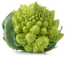 space broccoli