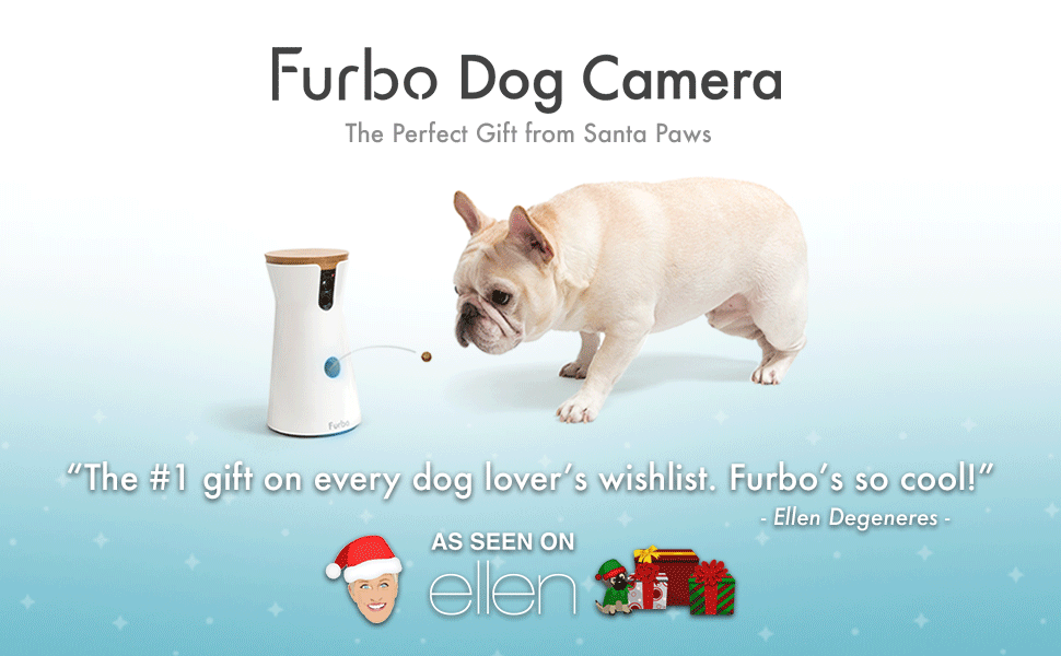Meet furbo the only pet camera with dog recognition technology