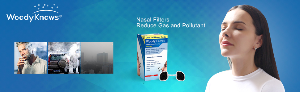 Gas and Pollutant Nasal Filter