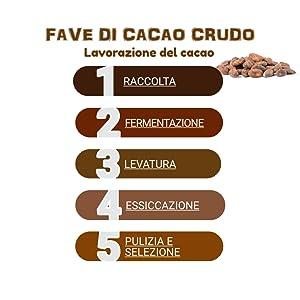 lavorazione cacao