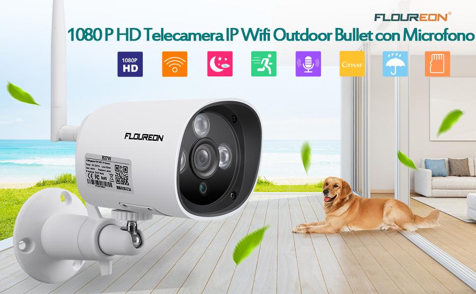 Bullet Telecamera IP