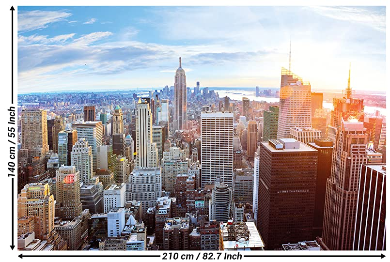 New york penthouse skyline fotomurale vista su manhattan for Stampe grandi da parete