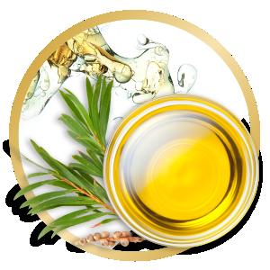 Un olio naturale con varie possibilità di applicazione