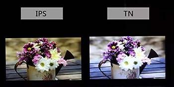 Differenza tra IPS e TN