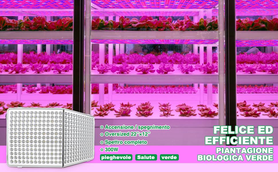 Bozily lampada piante coltivazione led indoor 300w luce crescita