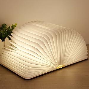 Libro Lampada