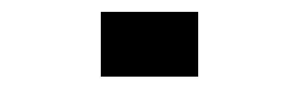 Nuoli Logo
