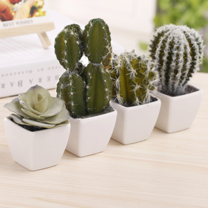 Amazon Com Mygift 5 Inch Mini Assorted Artificial Cactus Plants Faux Cacti Assortment In Square White Pots Set Of 4 Furniture Decor