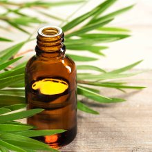 Tea tree oil reduces flakiness and itchiness, while supporting hair health