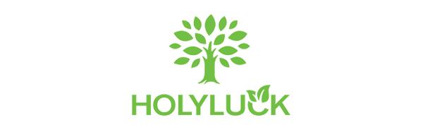 holyluck bag