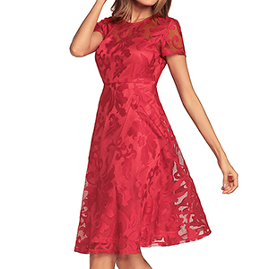 Womens Short Sleeve A-line Lace Midi Dress