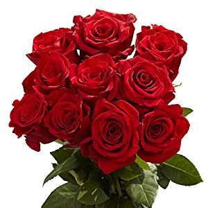 Amazon Com Globalrose 50 Red Roses Mother S Day Flowers Delivery