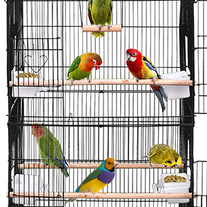 3 Wood Perches are included for birds to sit on and play.