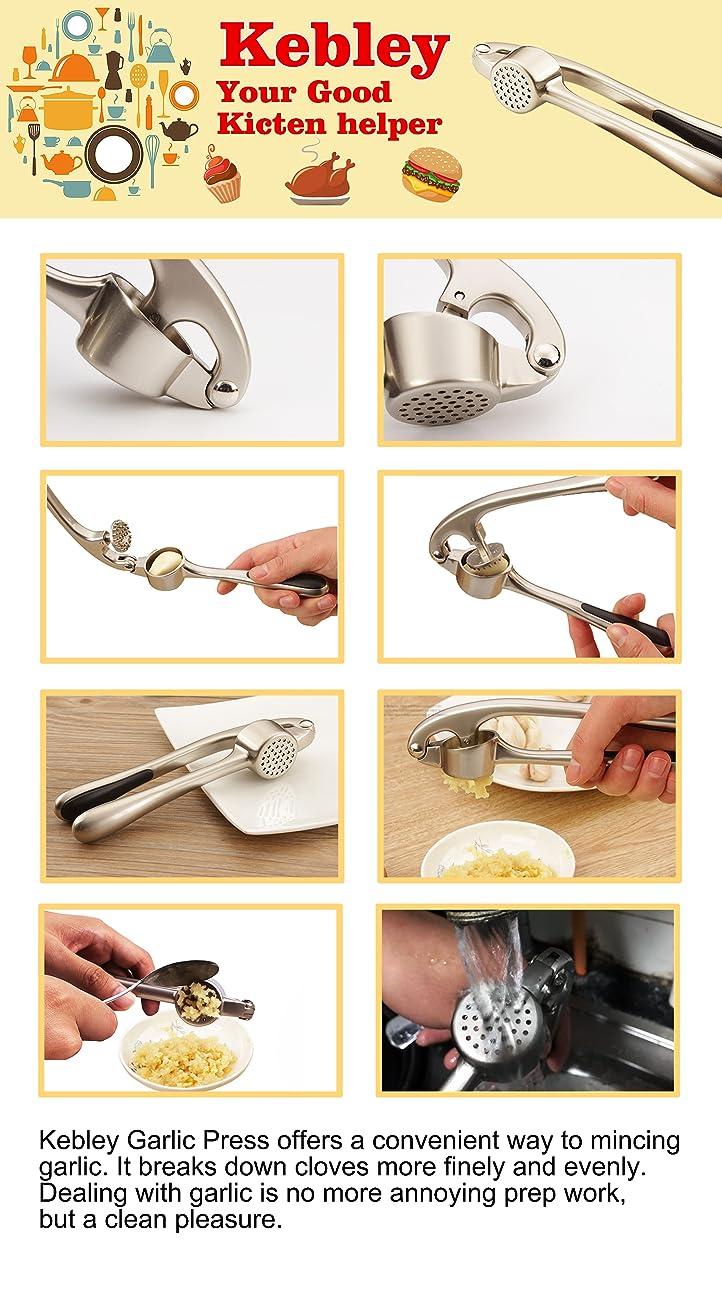 Amazon.com: Kebley prensa de ajos de acero inoxidable de ...