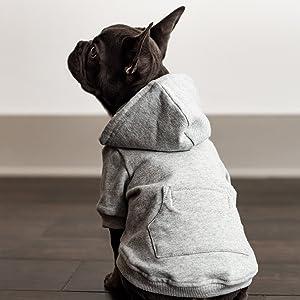 ellie dog wear grey hoodie 1