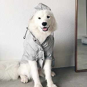 grey raincoat 2