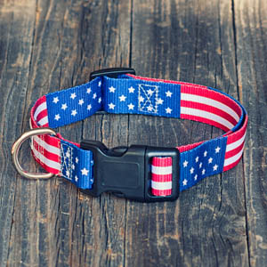 fall stand your country flag rose patriotic male clothes usa beautiful collars small disney doggles