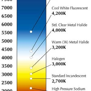 Color Temp Chart