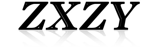 ZXZY lace shirts for women