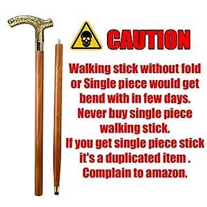 walking stick