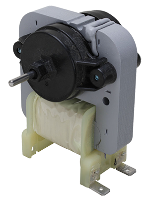 Evaporator motor