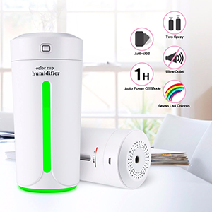 Mini size and lightweight air humidifier