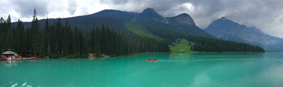 RetiCAM Tripod Lake Background