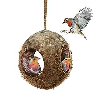 Coco bird house