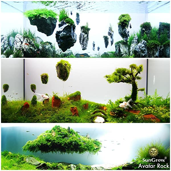 Avatar Pandora Landscape: Amazon.com : SunGrow Magical Hallelujah Floating Garden By
