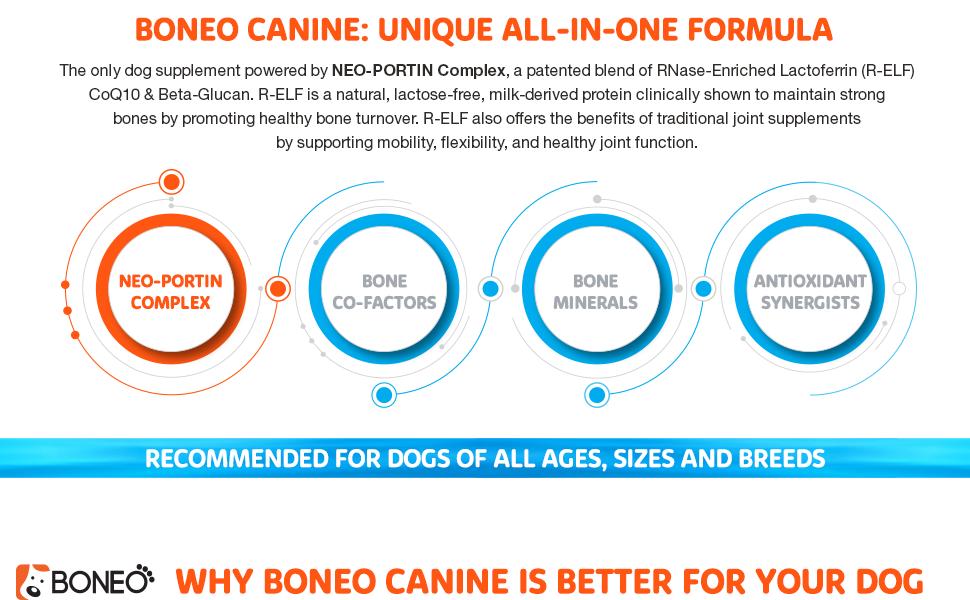 bf428cf854aa4 Amazon.com   Boneo Canine Maintenance Formula- Patented Bone And ...
