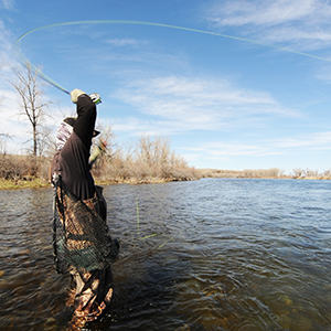 Fly Fishing with Fly Line