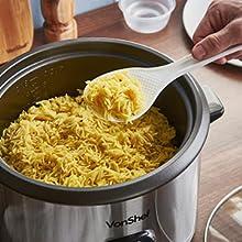 220v rice cooker