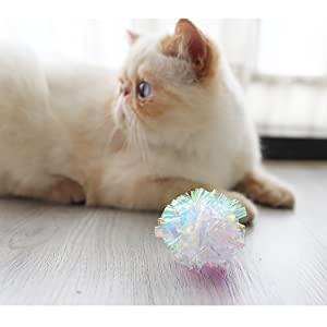 cat ball toy