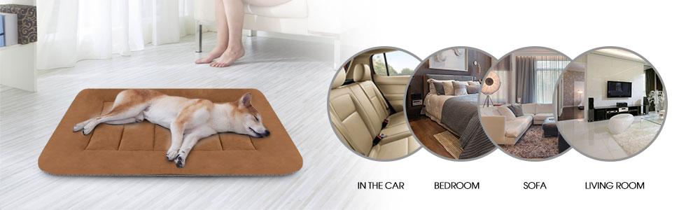 Amazon.com: Hero Dog – Almohadilla para cama de perro ...