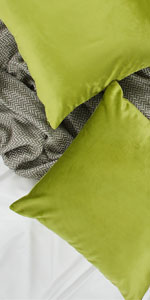 Apple Green Pillow Cover