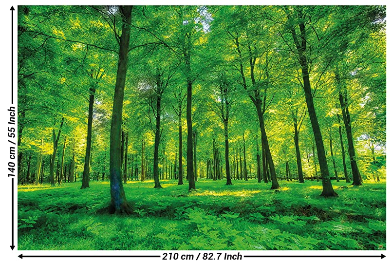 Amazon Com Great Art Wallpaper Trees Forest Nature Wall