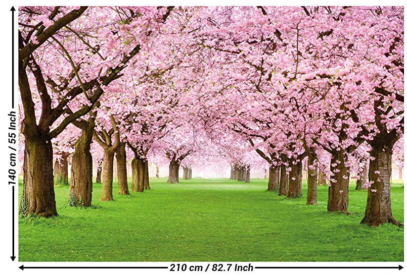 Wall Mural Cherry Blossoms Mural Decoration Flowers Spring Garden ...