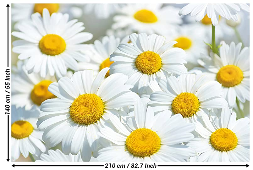Daisies Flowers Meadow Wall Paper Wall Decoration By Great Art 827