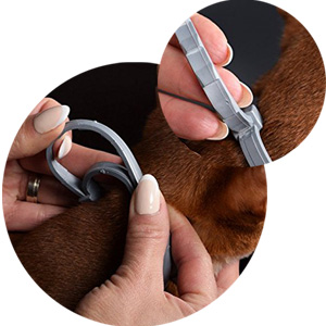 flea and tick collar cat