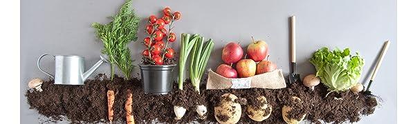 Vegetable garden grown in organic soil