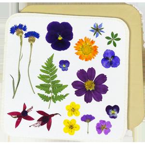 "Amazon.com: Microfleur 9"" (23 cm) Max Microwave Flower"