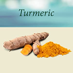 turmeric curcumin supplement capsules pills herbal organic tea detox inflammation black pepper best