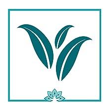 Cleanse Detox best dandelion flat tummy reduce bloating appetite suppressant inflammation turmeric